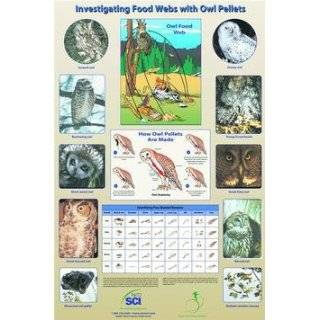 Investigating Food Webs with Owl Pellets Poster by Teachers Discovery