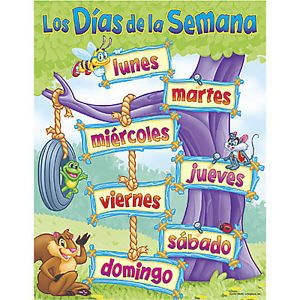 Days of The Week Trend Spanish Poster Chart New