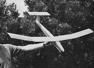 RC Glider Plan Micro Fish RC Glider Plans Model Airplane Plans