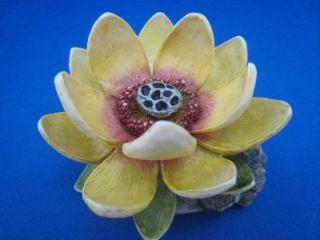 Harmony Kingdom Lord Byron's Garden Lotus Flower Edition 1 HG4LO Retired