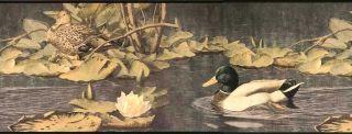 Wallpaper Border Pond Mallard Ducks Unlimited Antique Sepia Lily Pads DU2192B