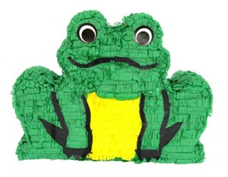 Mexican Pinata Frog Birthday Party Supplies Decorations