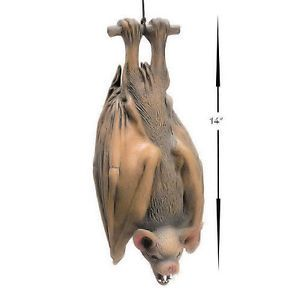 "Themed Halloween Party Decoration Prop Animal Hanging 14"" Bat Vampire"