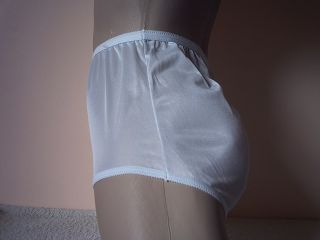Silky Baby Blue Sheer Nylon Full Cut Panties Vintage Mushroom Gusset s 39""