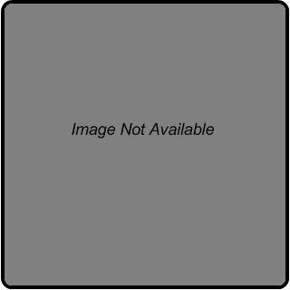 Asian Chinese Needlepoint Geisha Girl Unfinished Canvas w DMC Thread New
