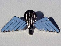 Foreign Badges Australian Jump Wings