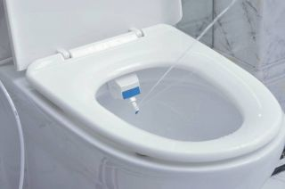 Fresh Cold Water Bidet Non Electric Adjustable Angle Bidet Toilet Attachment New