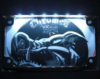 Chrome License Plate Frame w White LED Light Bar for Sport Cruiser Motorcycle
