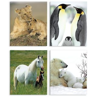 Animal Portfolio Folders 8 12 x 11  Pack Of 4
