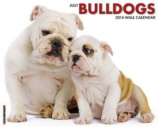 Bulldogs   2014 16 Month Calendar   Wall Calendars