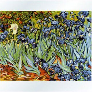 "DiyOilPaintings Paintworks Paint By Number 20""x16"", Origin Oil Painting by Van Gogh, Iris Flower   Childrens Paint By Number Kits"
