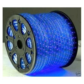 164 Feet Blue 2 Wire LED Rope Light Decorative Home Lighting: Home Improvement