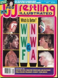 PRO WRESTLING ILLUSTRATED Hulk Hogan Stan Hansen Sting Ultimate Warrior 1 1991: Collectibles & Fine Art