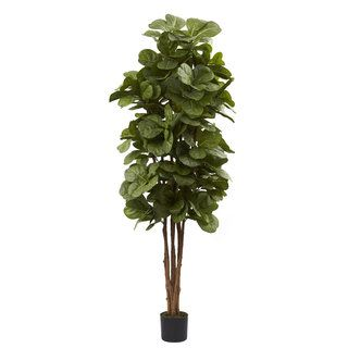 6 foot Fiddle Leaf Fig Tree Nearly Natural Silk Plants
