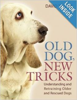 Old Dog, New Tricks: Understanding and Retraining Older and Rescued Dogs: David Taylor: 9781554071975: Books