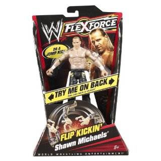 WWE Flexforce Hook Throwin Shawn Michaels Action Figure Toys & Games